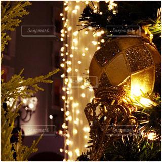 夜ライトアップされたクリスマス ツリーの写真・画像素材[918034]