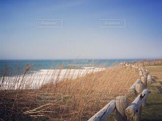 岬からの景色の写真・画像素材[1224457]