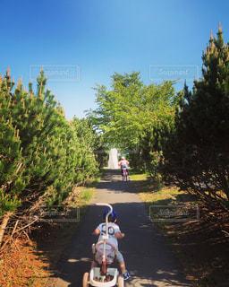 未舗装道路をオートバイに乗る人の写真・画像素材[2263442]