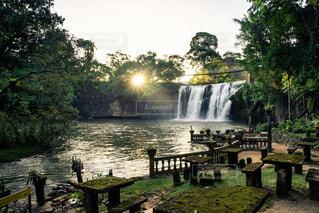 風景,滝,光,観光,海外旅行,ジャングル,ラピュタ,Australia,熱帯雨林,cairns,パロネラパーク