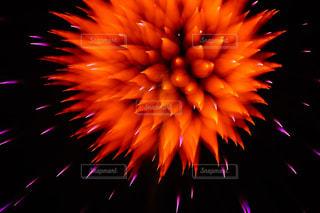 空に花火の写真・画像素材[1315877]