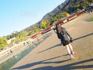 宮島の写真・画像素材[1612006]