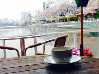 カフェ,桜,コーヒー,水辺,飯田橋,外堀,CANAL CAFE