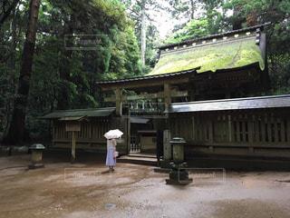 雨,傘,神社,梅雨,参拝