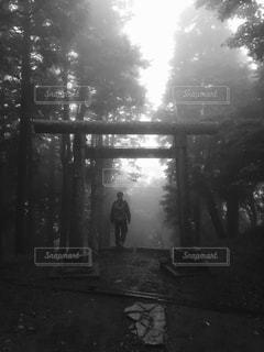 梅雨の大山登山の写真・画像素材[1443251]