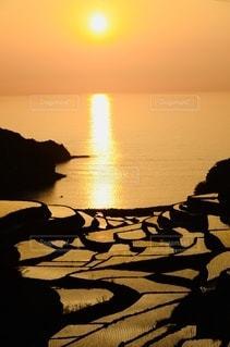 棚田と夕日の写真・画像素材[3342841]