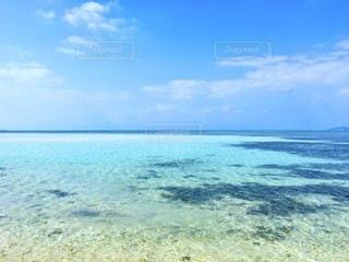 竹富島の海の写真・画像素材[3397150]