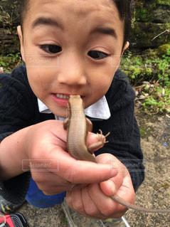 子供の写真・画像素材[655178]
