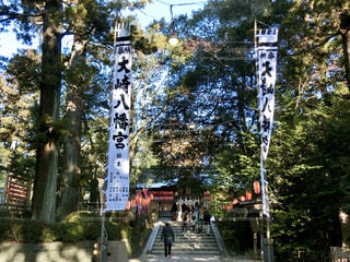仙台、大崎八幡宮。初詣の写真・画像素材[963549]