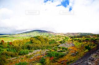 近くに緑豊かな緑の丘陵のアップ - No.756231