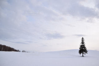 雪に覆われた斜面の写真・画像素材[915286]