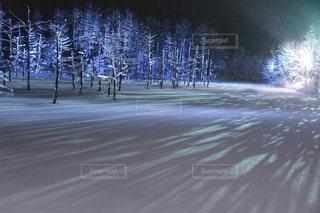 青い池のライトアップの写真・画像素材[2853100]