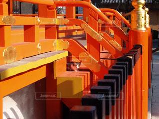 大きなオレンジ色の椅子の写真・画像素材[1019936]