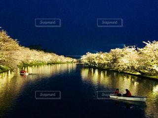 青森 弘前市の桜祭り。ライトアップされた夜桜たち♪の写真・画像素材[872687]