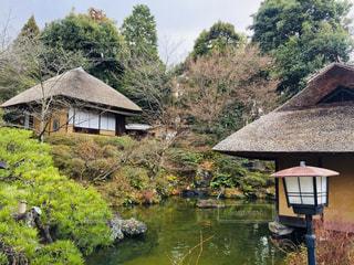 休日の京都散策中での1枚♪の写真・画像素材[995050]