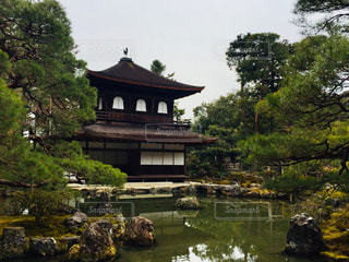 休日の京都 銀閣寺♪の写真・画像素材[995800]