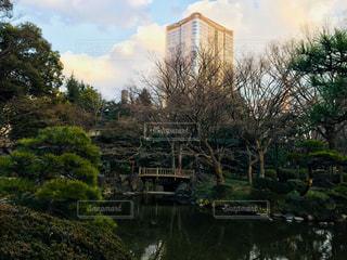 自然,風景,空,公園,建物,ビル,木,屋外,東京,国内,緑,雲,水,水面,池,景色,樹木,旅行,高層ビル,松,日比谷,国内旅行,日比谷公園