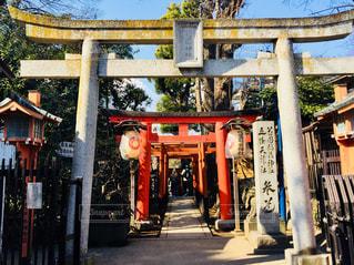上野散策中の1枚♪の写真・画像素材[1005772]