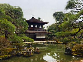 風情溢れる京都 銀閣寺♪の写真・画像素材[1013928]