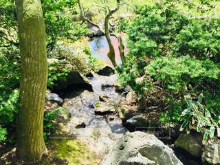 青森 平川市。盛美園での1枚♪の写真・画像素材[1017203]