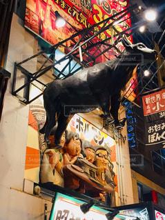 道頓堀。牛のオブジェ♪の写真・画像素材[1019510]