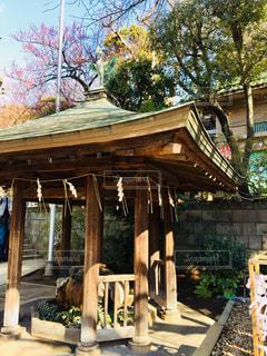 パワースポットとして有名な上野の五條天神社♪の写真・画像素材[1027864]