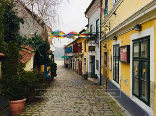 ハンガリー ブダペスト郊外の田舎町センテンドレ。2月の風景。の写真・画像素材[1788395]