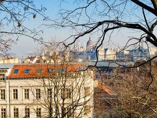 ハンガリー ブダペスト。2月の風景♪の写真・画像素材[1812866]