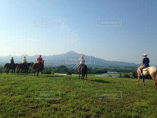 フィールドで馬に乗っている人のグループの写真・画像素材[968708]