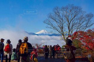 秋の高尾山頂と富士山 - No.767502