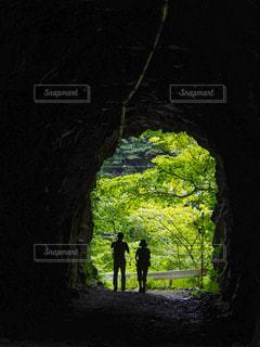 森の中のトンネルの写真・画像素材[767597]