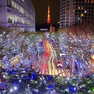 冬の六本木の夜景の写真・画像素材[771404]