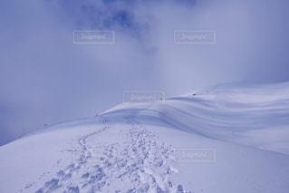 雪に覆われた斜面 - No.908985