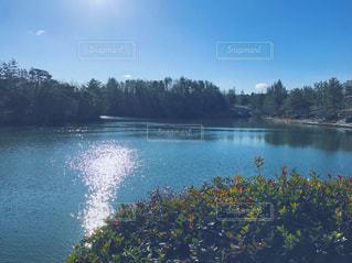 木々 に囲まれた水の大きな体の写真・画像素材[966267]