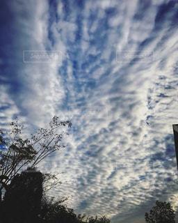 空,秋,雲,夕方,日没,うろこ雲,夕空,秋空,秋雲