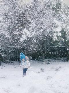 雪の中に立っている人の写真・画像素材[1819617]