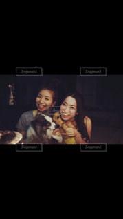 犬 - No.826803