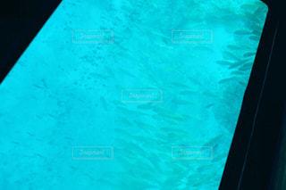 海の写真・画像素材[677066]