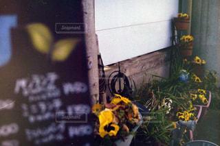 Nikonの写真・画像素材[697819]