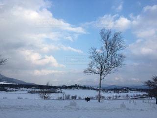 雪の空に雲のグループ カバー フィールドの写真・画像素材[1115826]