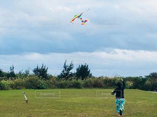 フィールドに凧の飛行少年 - No.1115827