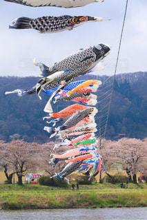 空中に凧の飛行の人々 のグループ - No.1115909