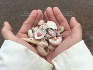 貝殻ハートの写真・画像素材[1116009]