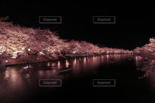 弘前城の夜景の写真・画像素材[1125218]