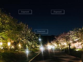 夜のライトアップされた街の写真・画像素材[1130523]