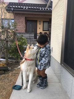 建物の前に座っている犬 - No.1164089