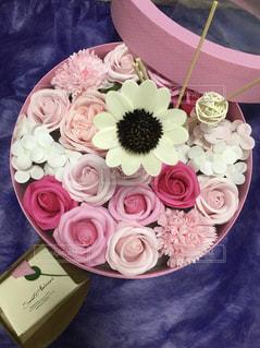 ピンクの花の写真・画像素材[1797529]