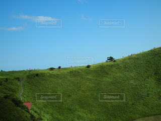 近くに緑豊かな緑のフィールドのの写真・画像素材[1226123]
