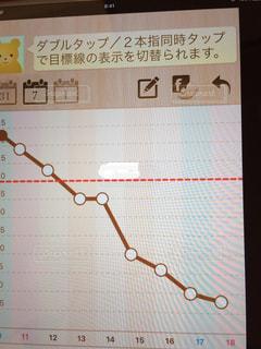 ダイエット,減量,体重グラフ,体重減少
