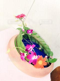花の写真・画像素材[1971374]